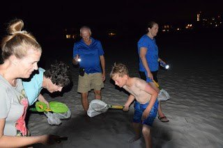 Catching Sand Crabs