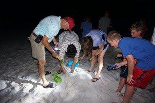 Sand Crabbing