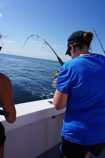 Reeling in the fish