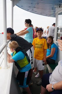 Looking for Dolphins