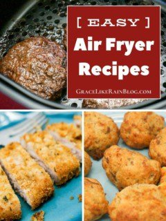 Easy Air Fryer Recipes for Beginners