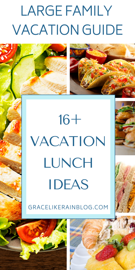 16+ Lunch Ideas for Family Vacation